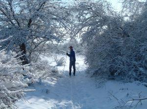 2003 01 01_fall & snow chamna_0049